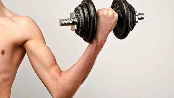 プリモボラン 筋肉 ビルダー